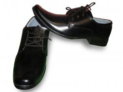 Mens Leather Casual Shoe (TK-630)