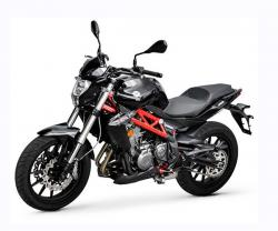 Benelli TNT 300(ABS)