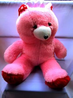 Pink Teddy - (FLOWERHOUSE-007)