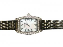 Geiger All Stainless Steel Watch for Ladies (GE-378)
