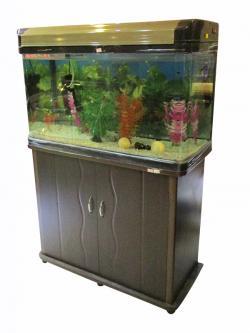 Aquarium - 32x21 - (LS-042)