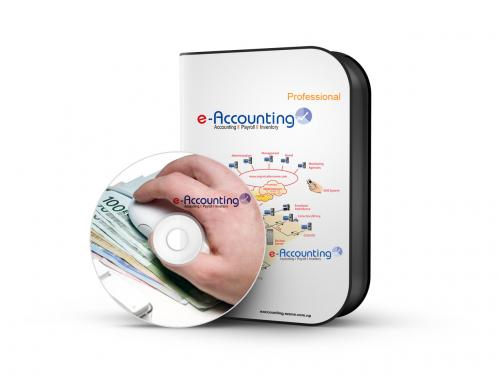 Online Accounting Software (Professional Version)