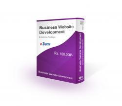 Business Website Development Enterprise Package