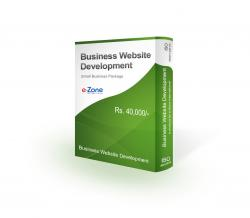 Small Business Website Development Package