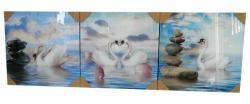 Living Walls 3 Piece Crystal Frame - (LW-099)