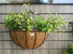 Living Walls Handmade Flower Hanging - (LW-117)
