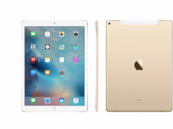 iPad Pro 12.9 Inch 128GB (WiFi Only) - (ES-022)