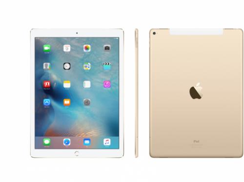 iPad Pro 12.9 Inch 256GB (WiFi + Cellular) - (ES-025)