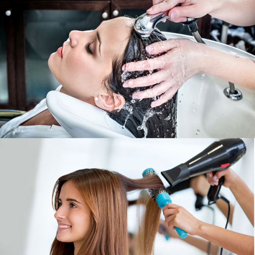 Hair Wash + Blow Dry - (OF-005)