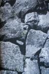 Black & White Stone Design Wallpaper For Home Decoration (003000) SD-WP-040