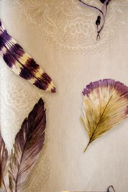 Feather Design Wallpaper For Home Decoration SD-WP-068