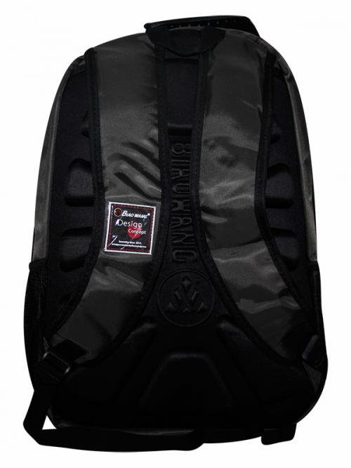 Biaowang 2 Layer Laptop Bag (JRB-0078)
