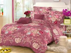PR-8509 Bed Sheet With Blanket Cover