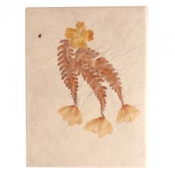 Leaves Pasted Notebook (RASH-0074)