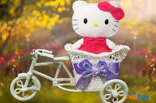 Valentine Cycle Doll